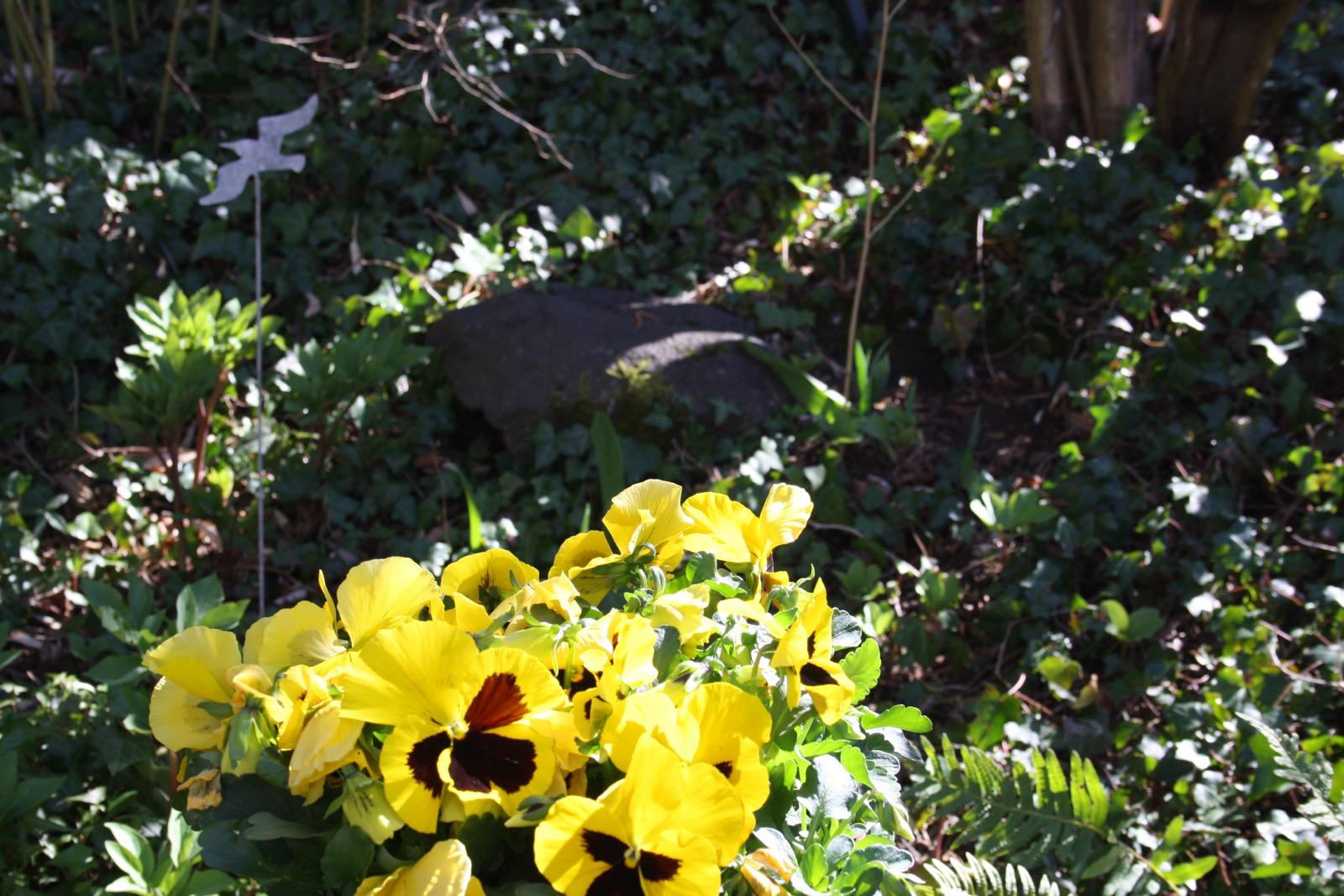 Mon jardin 45ee0f11