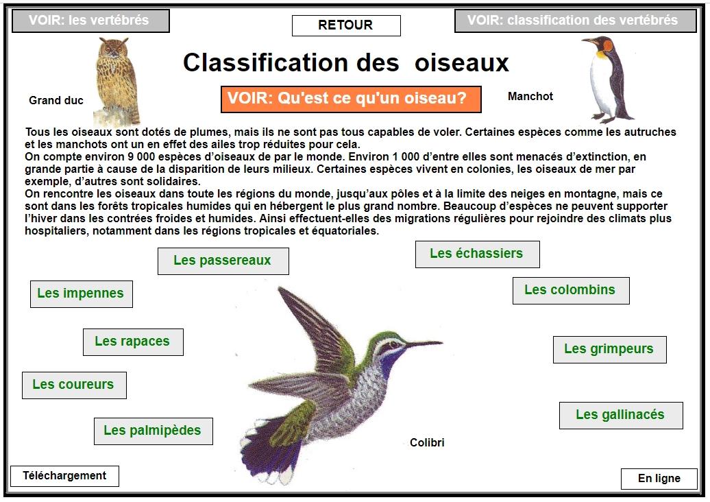 Classification des oiseaux Sans_t43