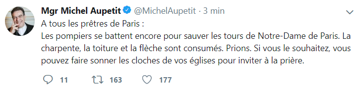 Incendie à Notre Dame de Paris ! Captur79