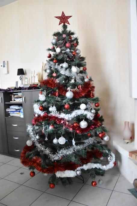 Vos décorations de Noël... Dsc_0037