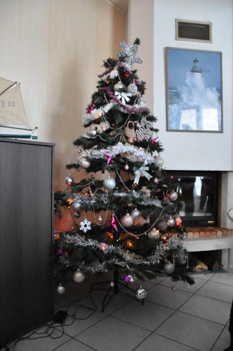 Vos décorations de Noël... Dsc_0618