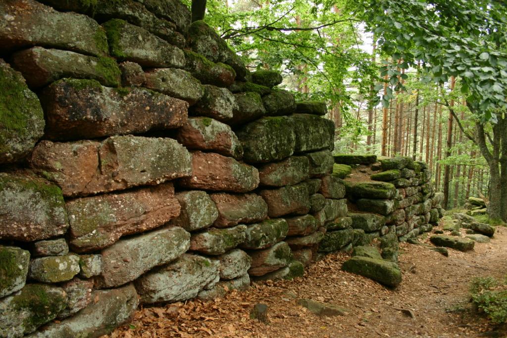 Un mur d'Adrien ou d'Antonin dans les Vosges Odilie10