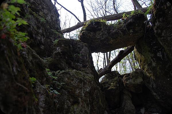Містичні древні святилища. 13 нерозгаданих культових комплексів, знайдених на території України (фото). 1211