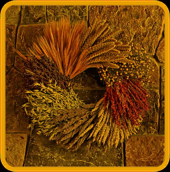 Ламмас/ Ритуальное проращивание зёрен. 212