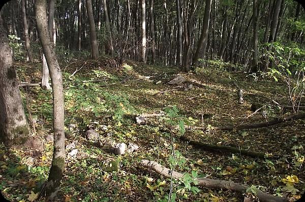 Містичні древні святилища. 13 нерозгаданих культових комплексів, знайдених на території України (фото). 813