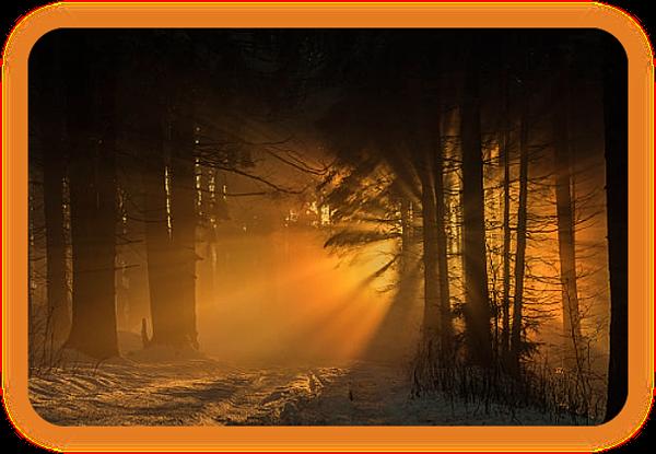 Ритуал Йоля, чтобы почтить Солнце. _1412