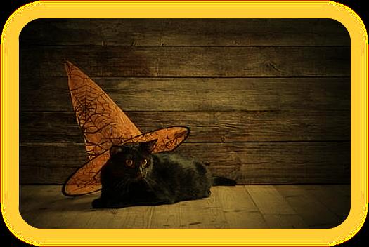 Macta Mascota (небольшой талисман для защиты домашнего питомца). _u_aa_10