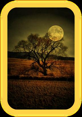 Название «Лунная Тень» и что оно означает. A1_110