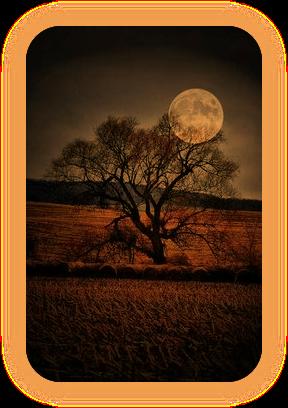 Назва «Місячна Тінь» і що вона означає. A21