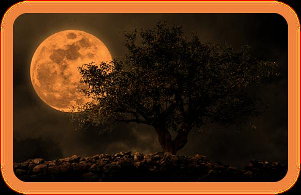 Настройтесь на Луну для Активной Магии. A_1612