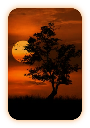 Назва «Місячна Тінь» і що вона означає. A_411