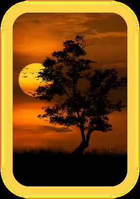 Название «Лунная Тень» и что оно означает. A_4_111