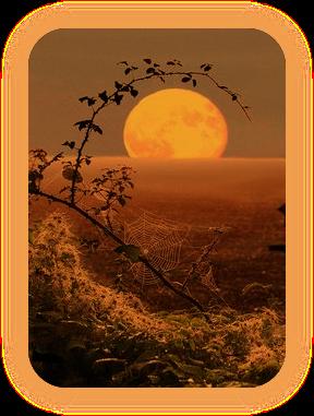 Назва «Місячна Тінь» і що вона означає. A_511