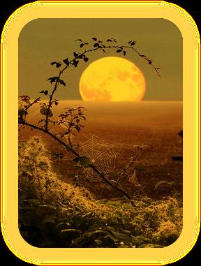 Название «Лунная Тень» и что оно означает. A_5_111