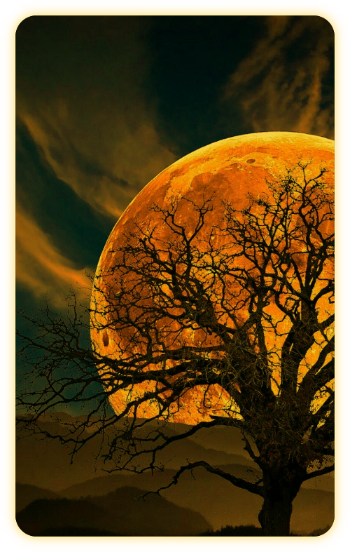 Название «Лунная Тень» и что оно означает. A_6_111