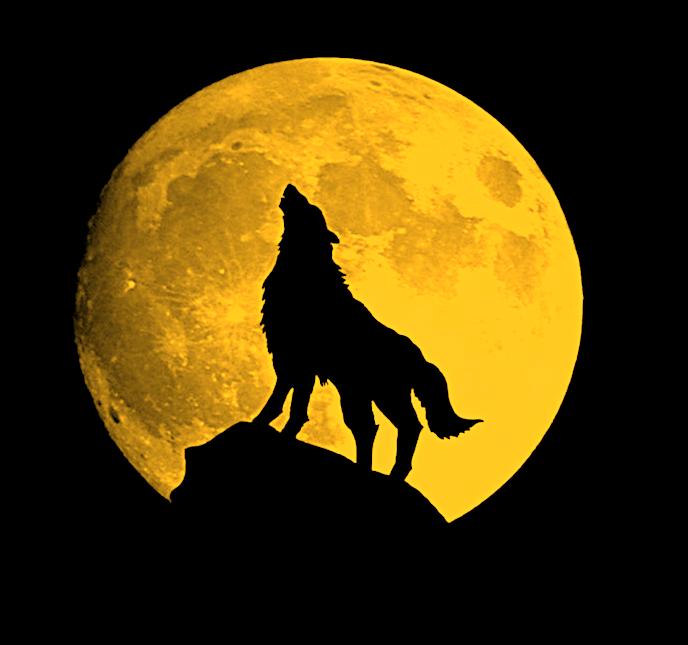 Январь 2020- Полнолуние Волка – Урок Несовершенства. A_n_110