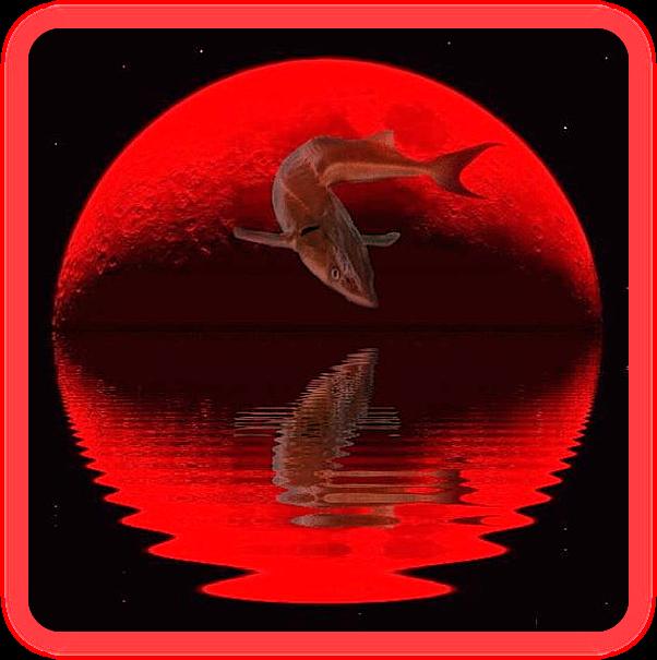 Полная Осетровая Луна в августе 2019 года. Готовимся к переменам с помощью ритуального очищения. Aaau_a14