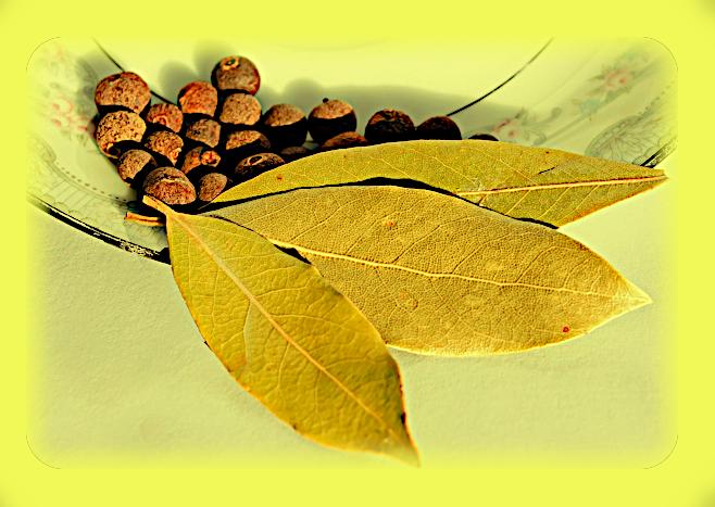 Магическое использование Душистого Перца (Pimenta dioica). Aiaao_10