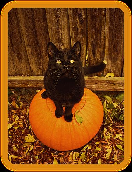 Хеллоуин, Самайн, Святки, Дивали - что между ними общего?  Ea_a11