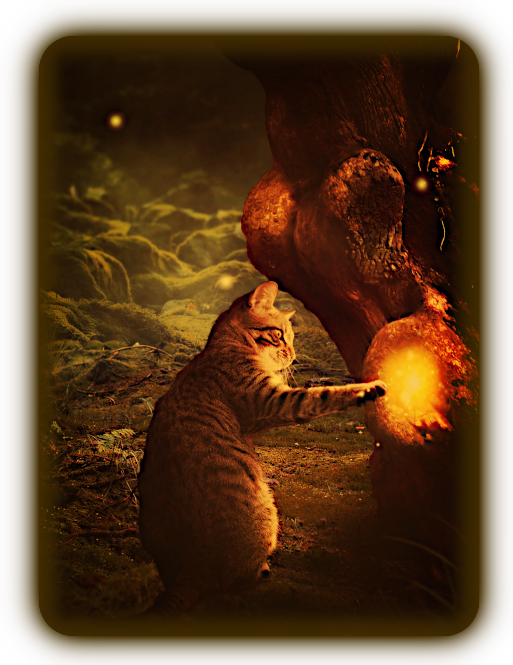 Магические Кошки - как Фамильяры и Тотемы. Iuu_u_10
