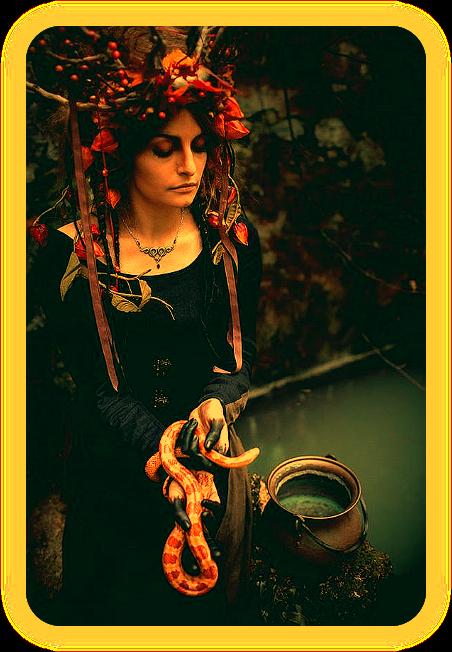 Растения, травы и темная магия. Nu__u10