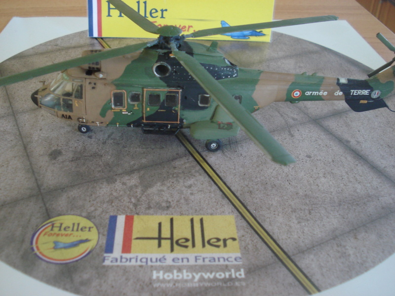 AS 332 m1 Super Puma (cougar alat ) 1/72e Dsc07330