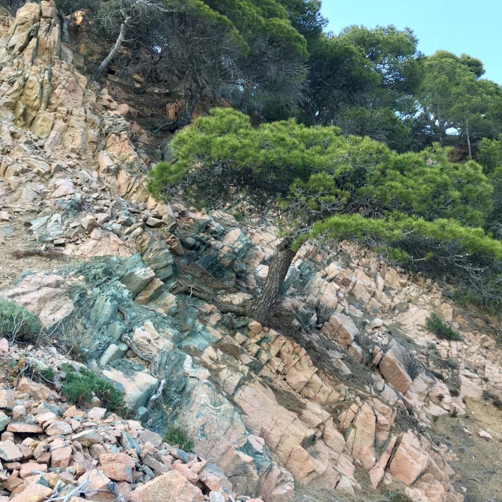Costa Brava et terres alentours Fullsi12