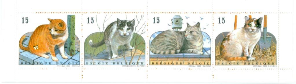 Katzen - Seite 2 Katten10