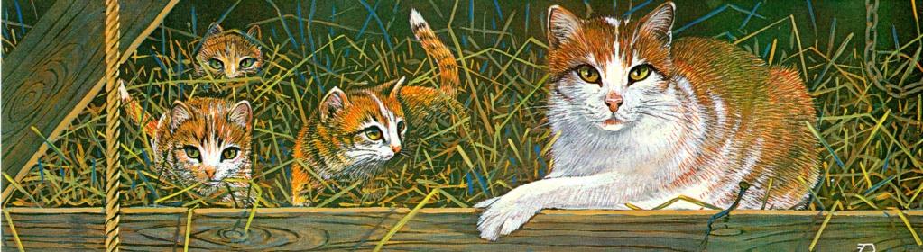 Katzen - Seite 2 Katten11