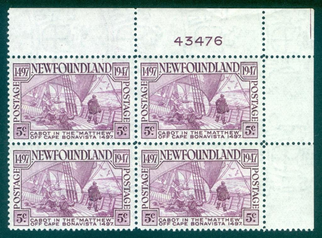 Neufundland Newfou11