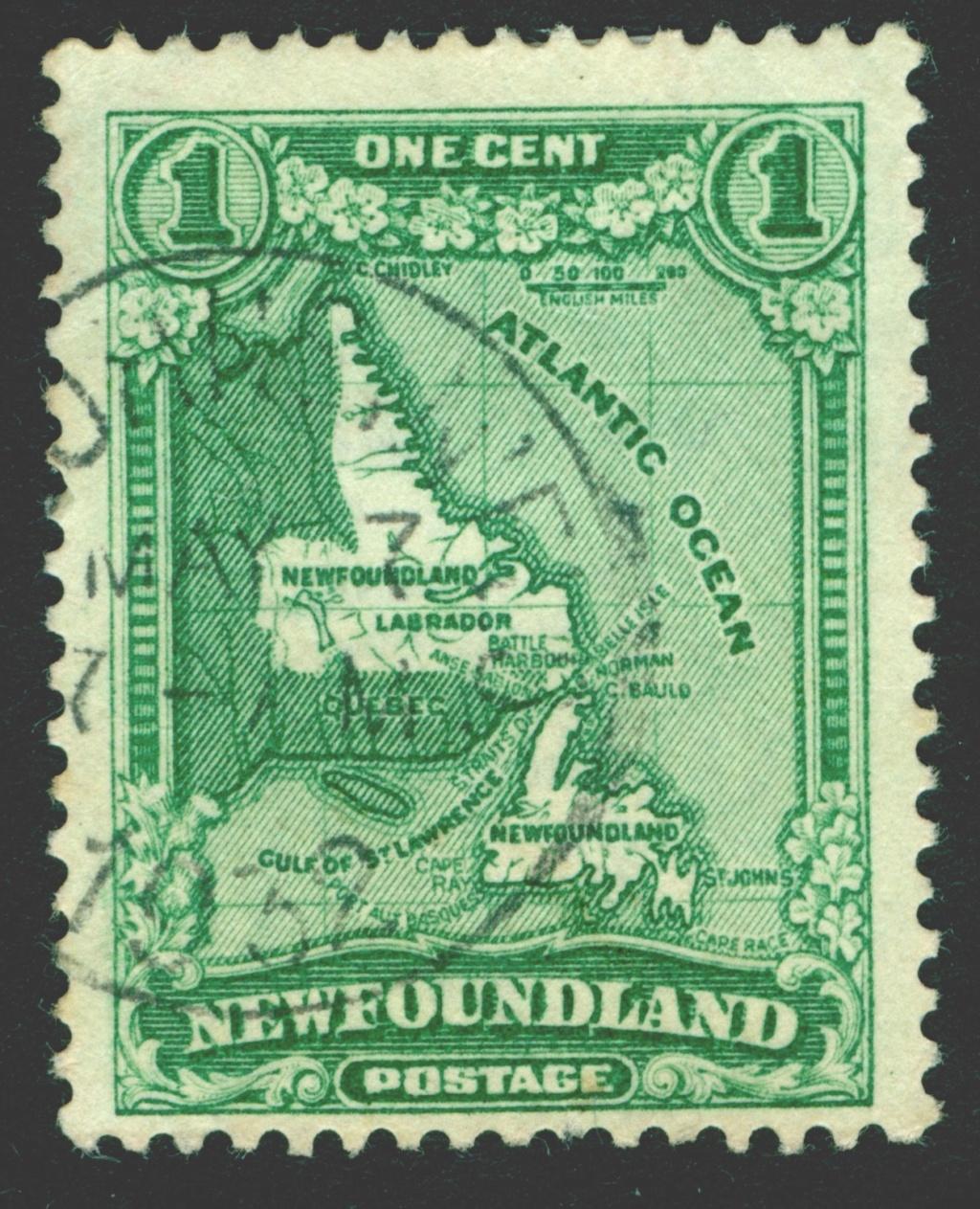Neufundland Newfou12