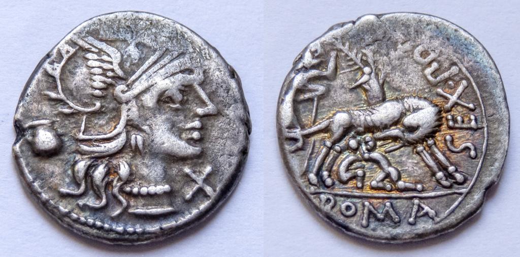Denario de la gens Pompeia. SEX PO (FOSTLVS) ROMA. Loba amamantando a Rómulo y Remo. Roma. P1050010