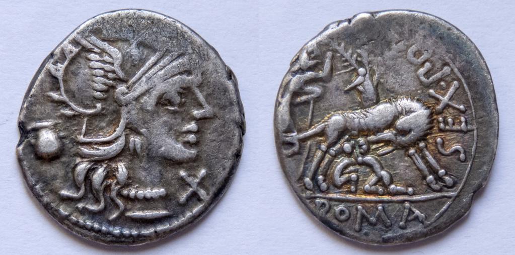 Denario de la gens Pompeia. SEX PO (FOSTLVS) ROMA. Loba amamantando a Rómulo y Remo. Roma. P1050011