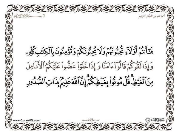 الآية 119 من سورة آل عمران الكريمة المباركة Aeoo_117