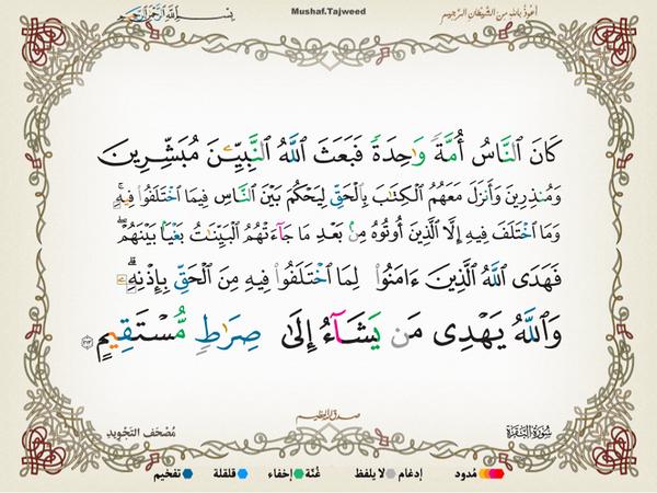 الآية 213 من سورة البقرة الكريمة المباركة Aeoo_213