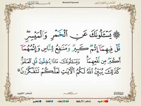 الآية 219 من سورة البقرة الكريمة المباركة Aeoo_219
