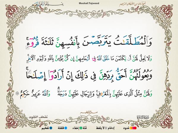 الآية 228 من سورة البقرة الكريمة المباركة Aeoo_229