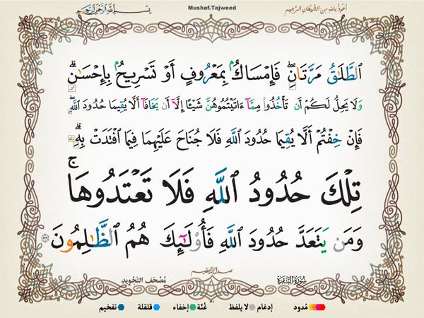 الآية 229 من سورة البقرة الكريمة المباركة Aeoo_230
