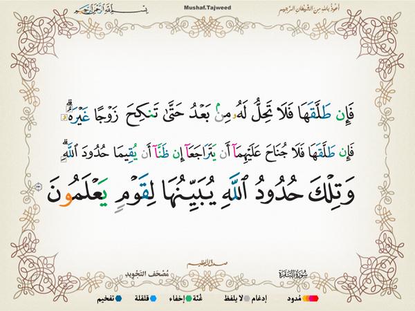الآية 230 من سورة البقرة الكريمة المباركة Aeoo_231
