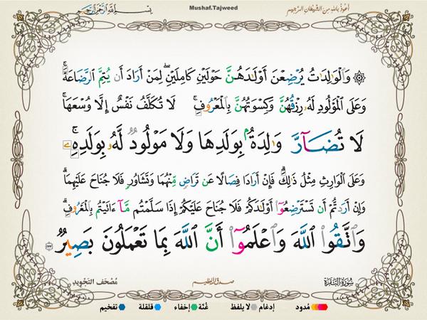 الآية 233 من سورة البقرة الكريمة المباركة Aeoo_234