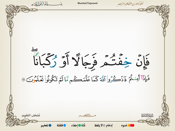 الآية 239 من سورة البقرة الكريمة المباركة Aeoo_240