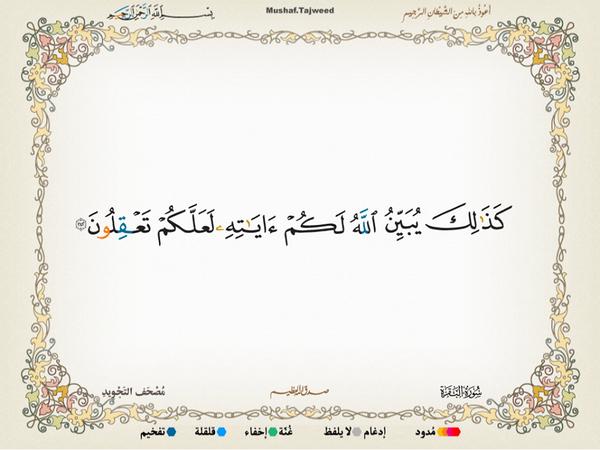 الآية 242 من سورة البقرة الكريمة المباركة Aeoo_243