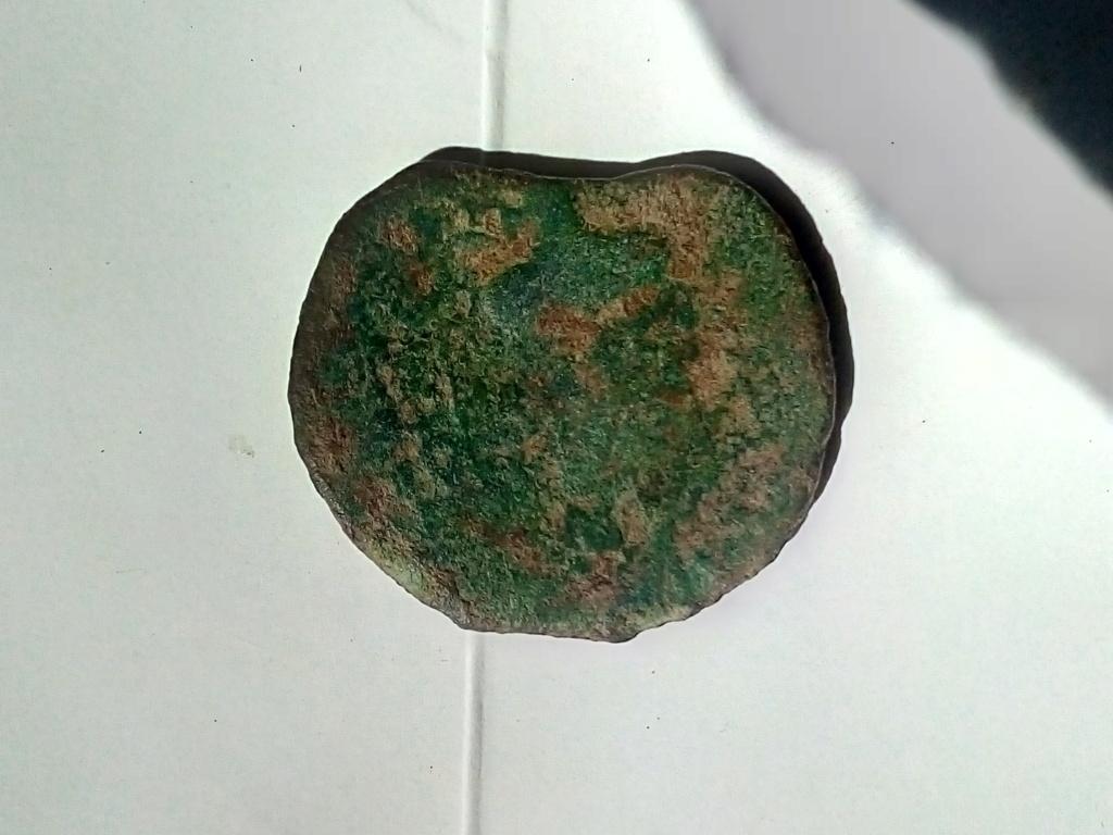 Monnaie bronze gauloise, longostaltete? Img_2012