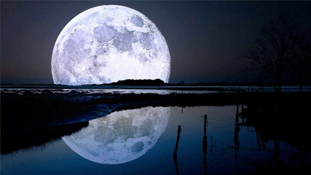 Hilo para dar las buenas noches  - Página 2 12088711
