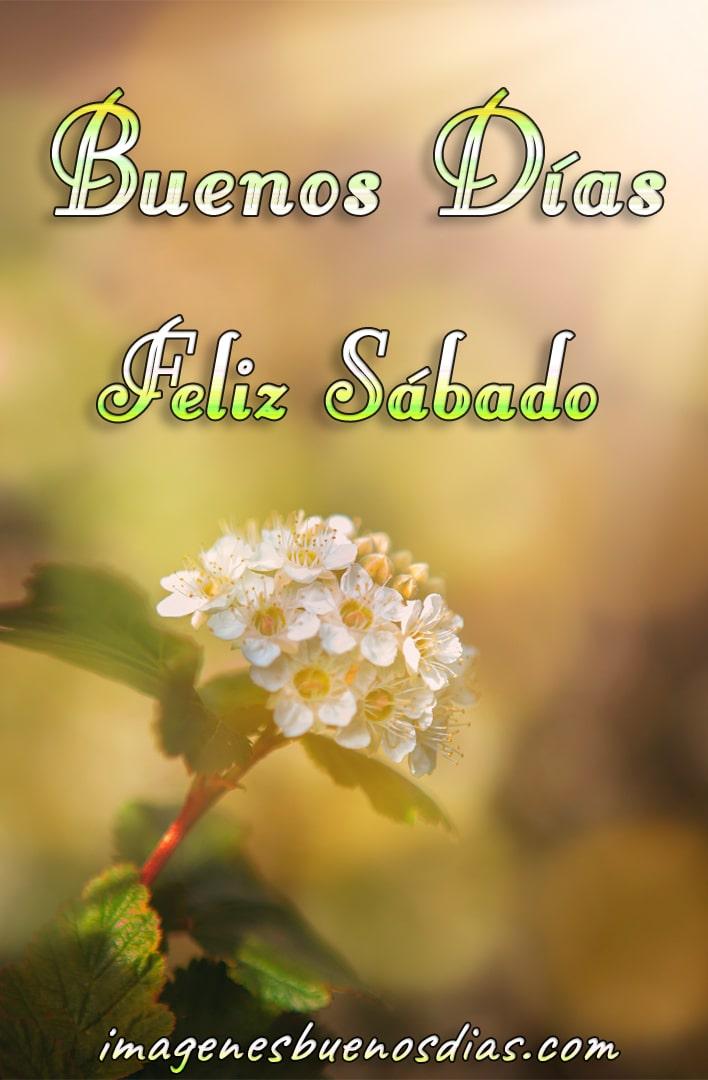 Hilo para dar los buenos días - Página 14 Buenos14