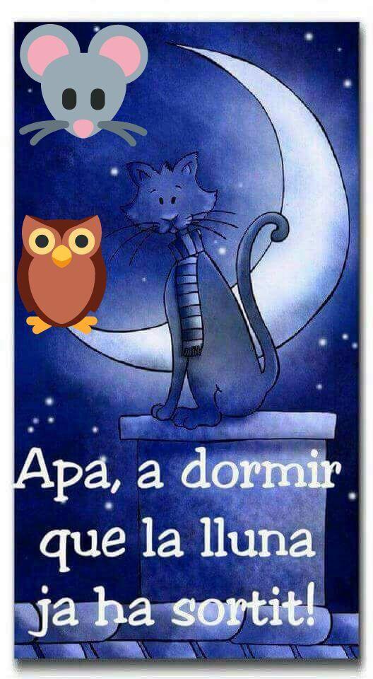 Hilo para dar las buenas noches  - Página 6 D5ae7710