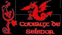 Diversification de la gamme de produits Logo-c11
