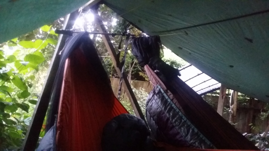Views From the Hammock 20180710