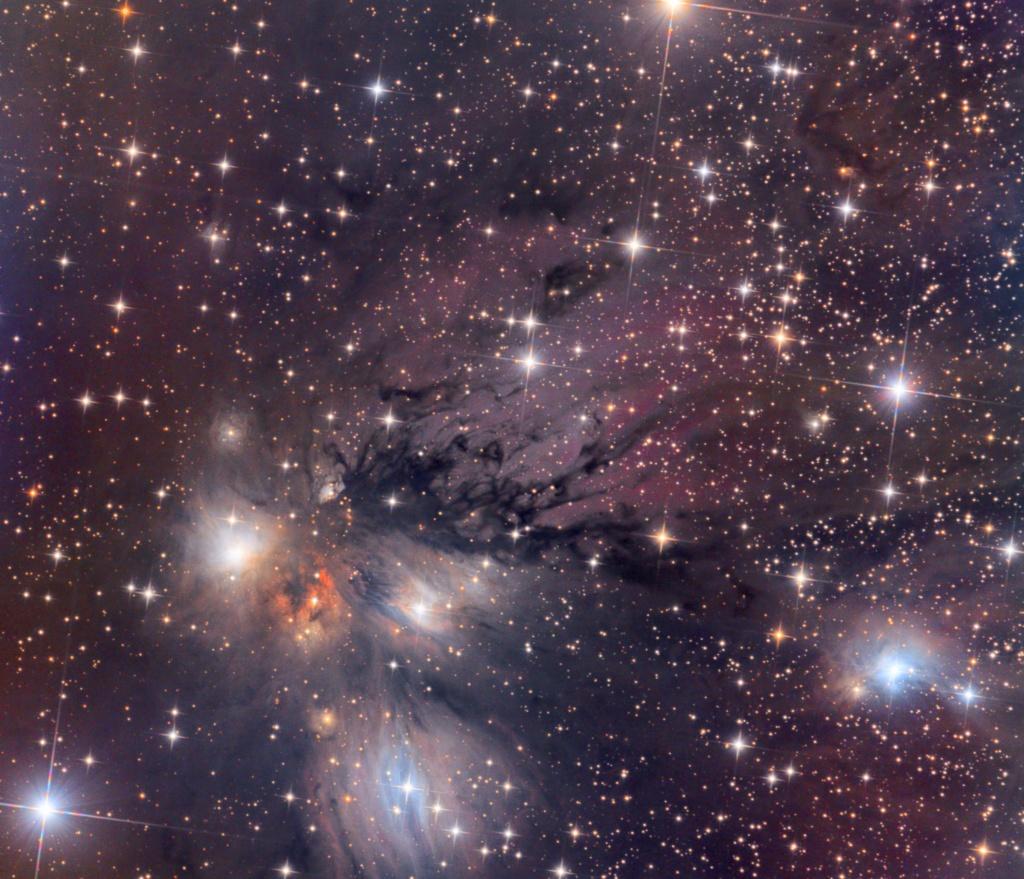 Nébuleuse NGC 2170 Ngc21711