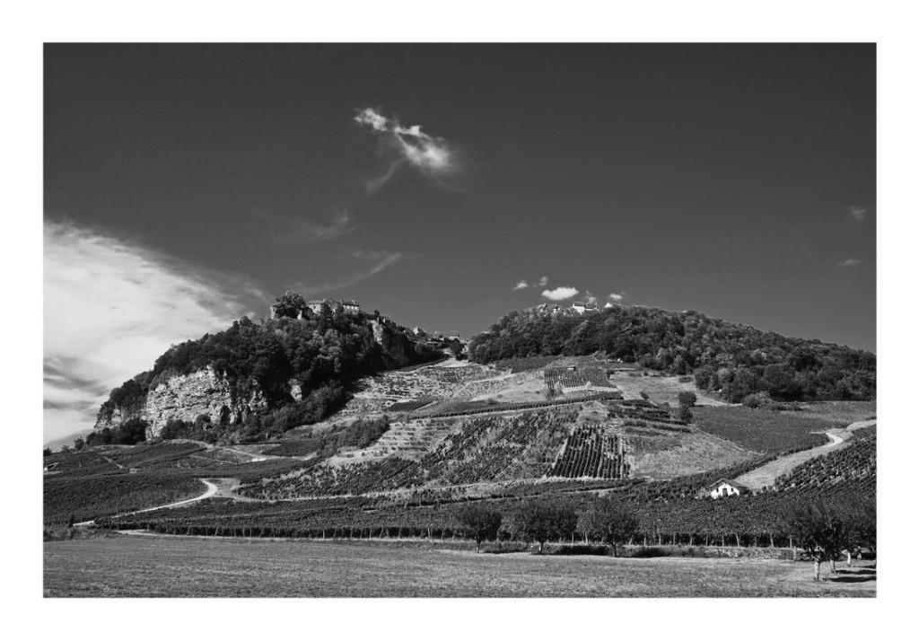 Village et Vignes,... P8100210